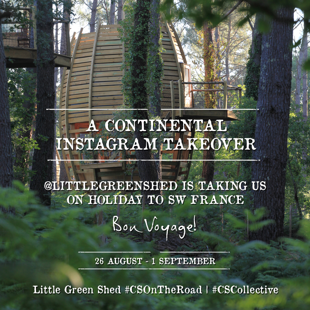 littlegreenshed canopy and stars ig takeover
