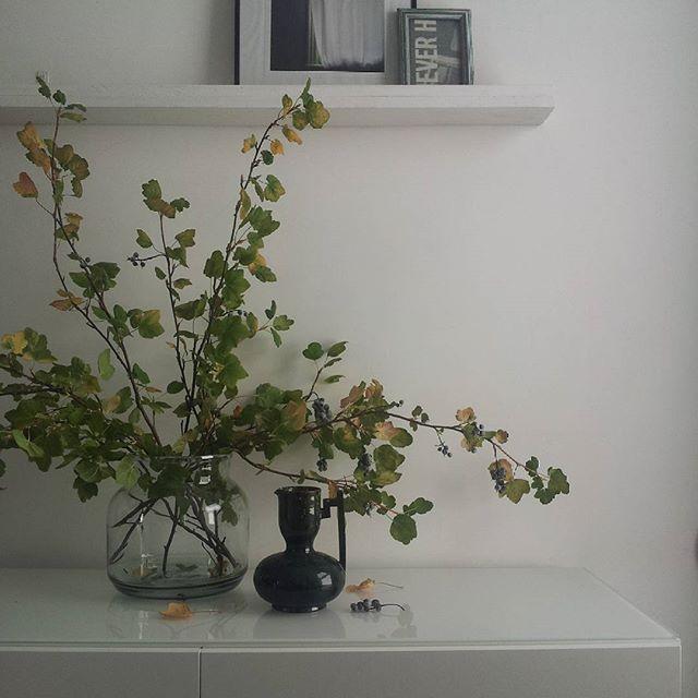Littlegreenshed blog - natureinthehome soak and sleep
