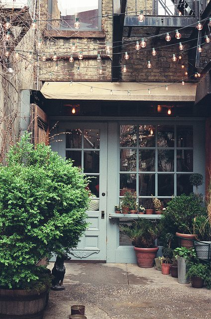 Rustic exterior, twinkly lights, festoons