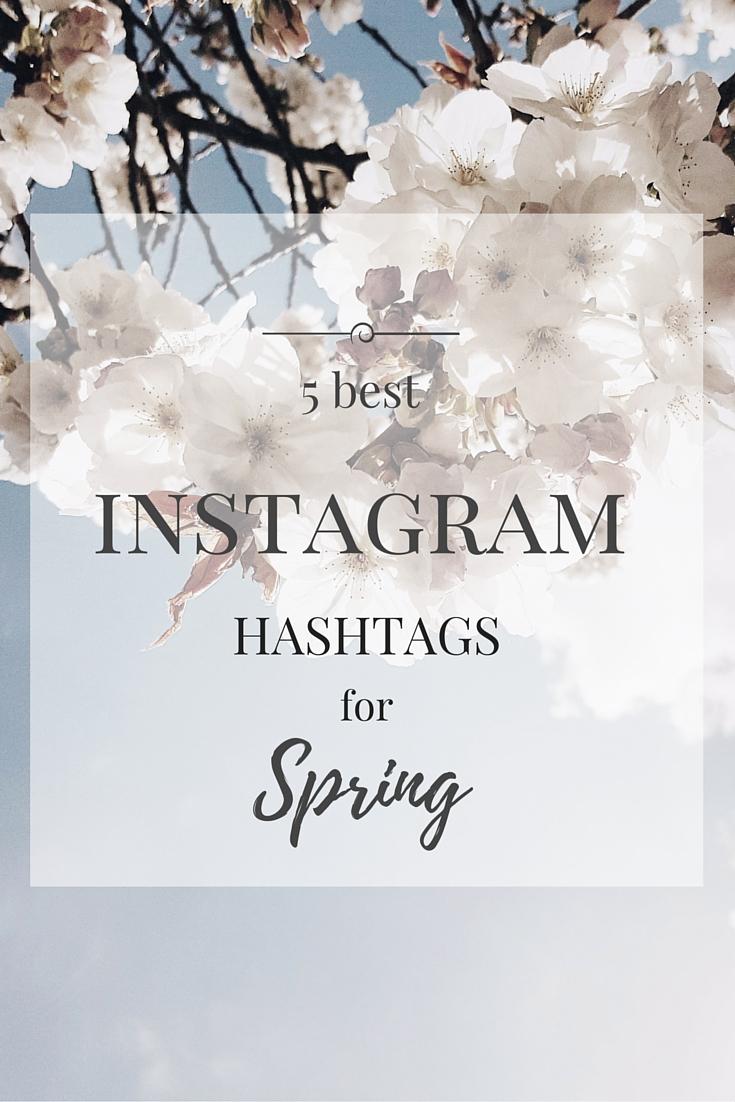 littlegreenshed blog 5 best spring instagram hashtags