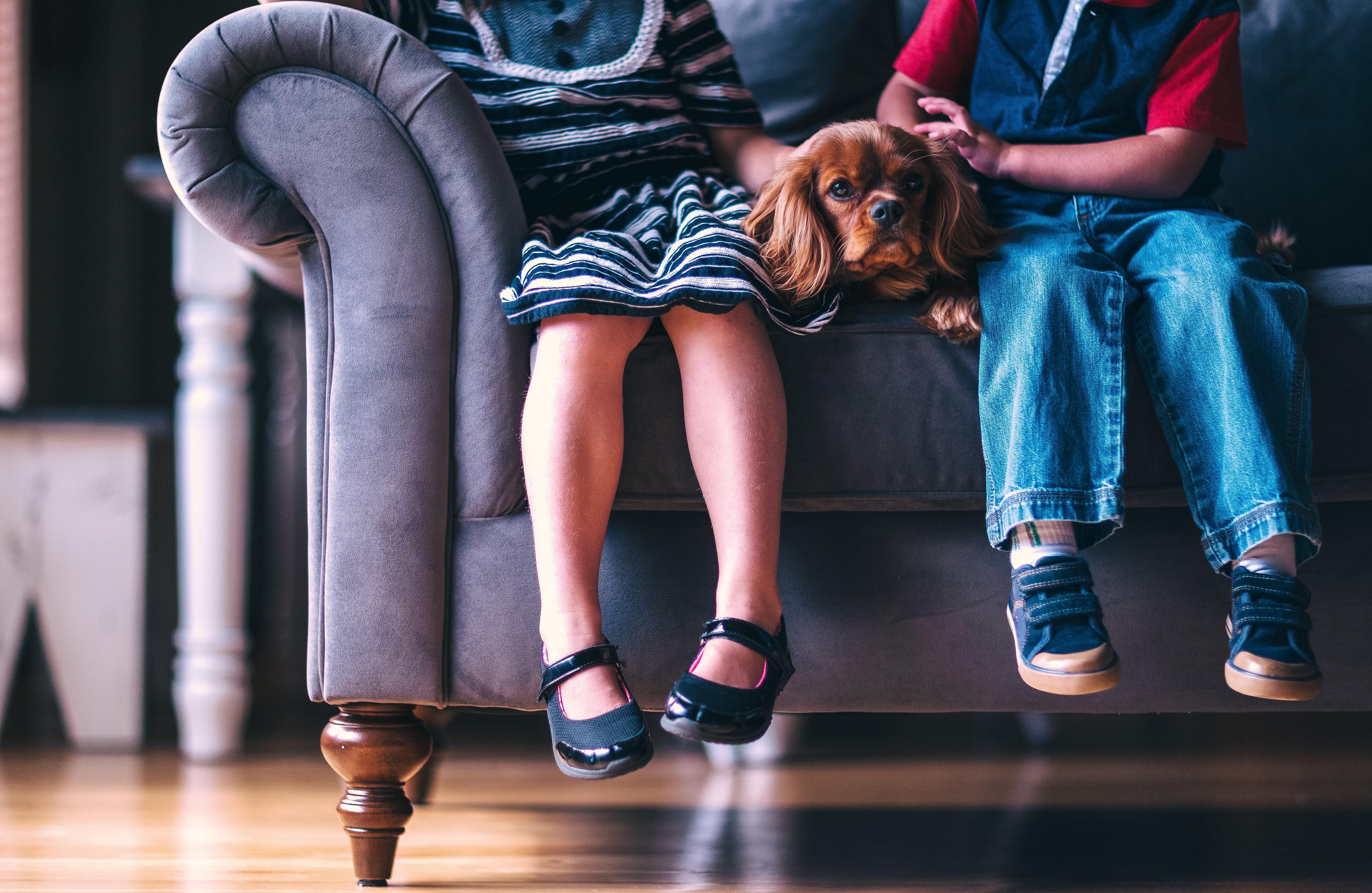 unsplash sofa image The Lounge CO