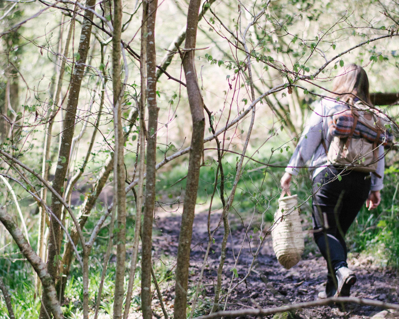 fjallraven backpack littlegreenshed blog April 2017