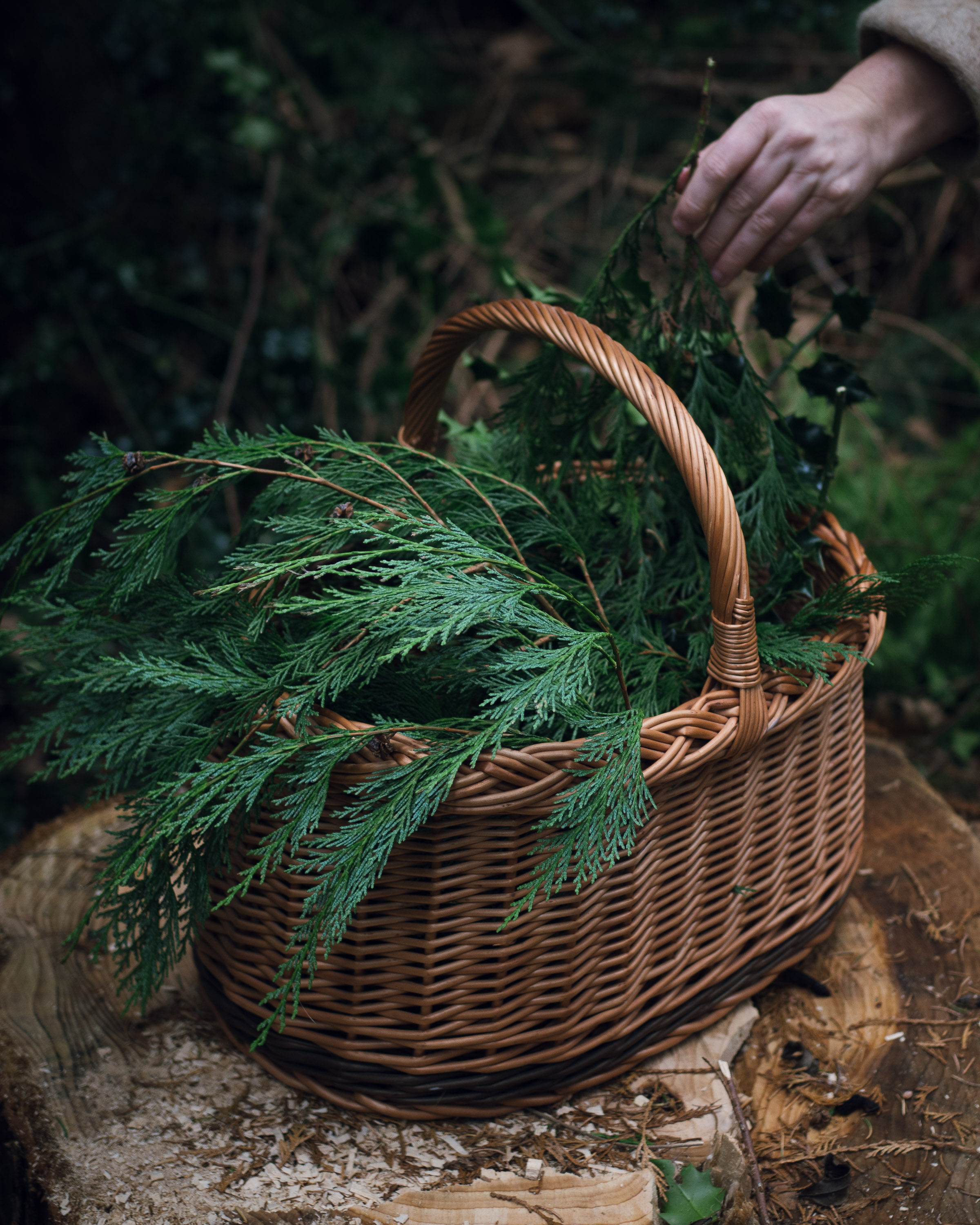 seasonal rituals foraging for greenery