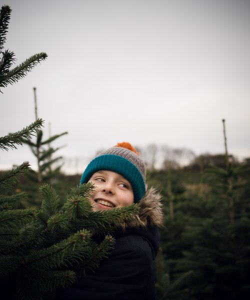 seasonal rituals christmas tree