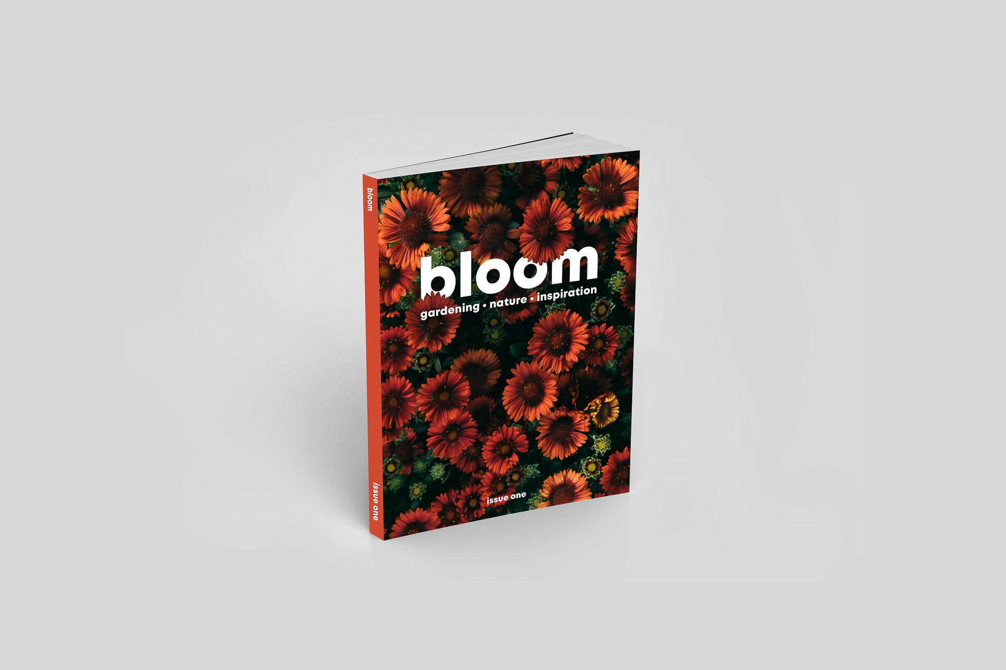Bloom magazine - neilgurryworks