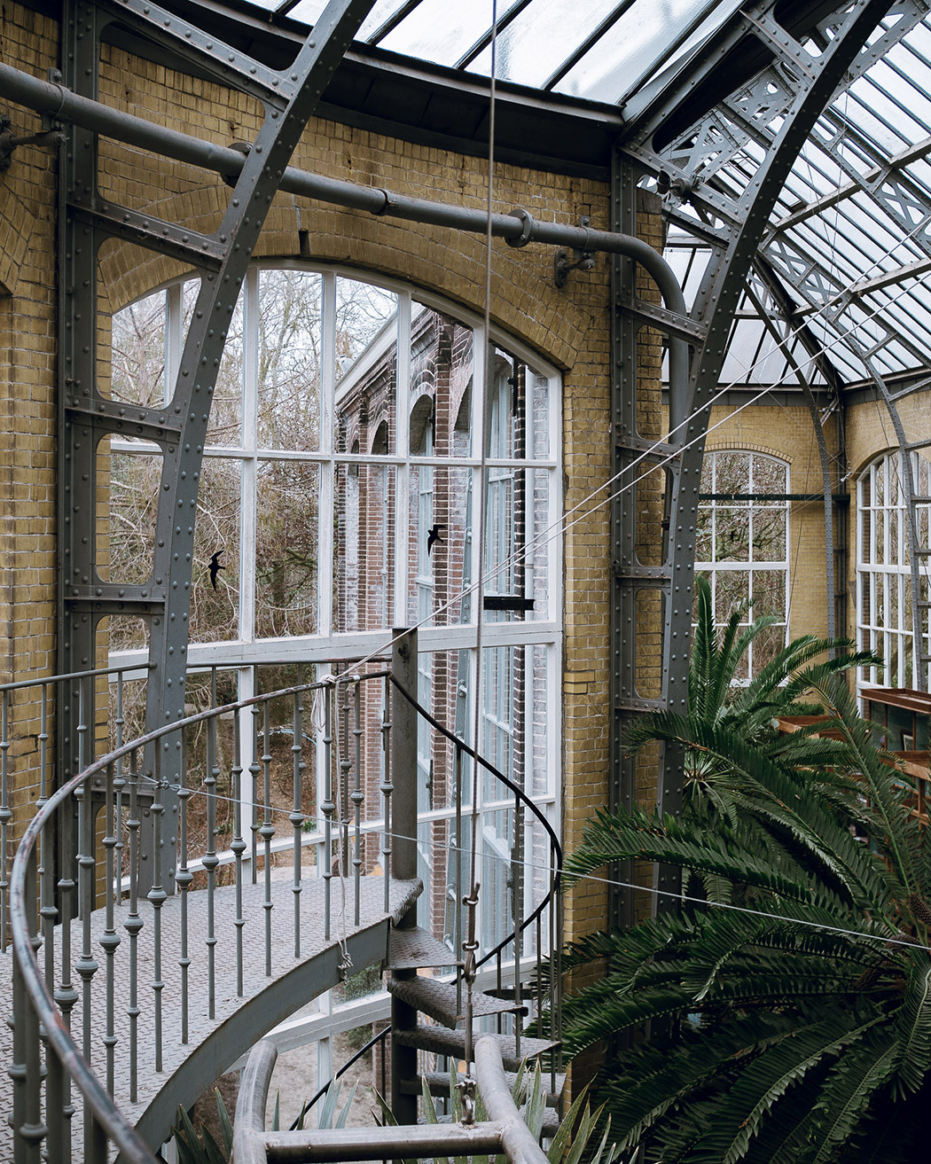 During Our Recent Trip To Amsterdam, We Visited The Botanical Gardens,  Hortus Botanicus. A Beautiful Garden And Series Of Glasshouses In Central  Amsterdam.